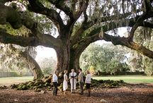 New Orleans Elopements / Best options for romantic elopements in New Orleans