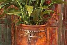 Moroccan Finds