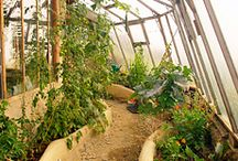 Earthships - Permaculture / by Lu Rocha