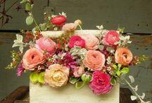 Curso de florería