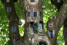 tree hause