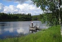 Iso-Syöte / Syöte ist der größte der vier Teile des Nationalparks und bietet besonders im Sommer jede Menge Möglichkeiten zum Wandern, Rad- und Mountainbike fahren.