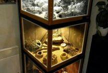 Reptiles enclosure