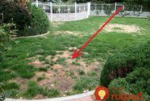 Záhradkári-napady