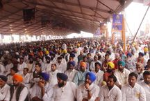 Golden Jubilee celebrations of Punjabi Suba