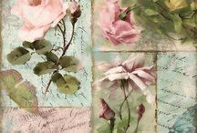Rosas y flores bellas