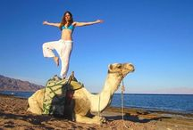 Cheap Egypt travel packages / www.lookategypttours.com