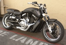 Vrod Muscle's