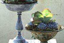 Gardening / Gardening, including container gardening, projects for the garden,etc.