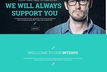 Multipupose Wordpress  theme
