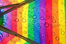 Umbrellas / by Joan Rehfus Bash