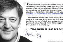 Stephen Fry / by Lesley Davis