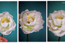fiori in carta