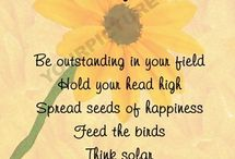 Sunflowers ~ Sunny Side Up / Sunflower Love ♥