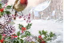 Christmas / by Dorota Wrona