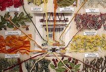 Viking fabric dying