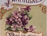 postcard tattoos / victorian postcard influences in tattoos / by DIY BOHO HOME
