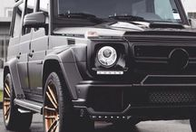 Mean Whips