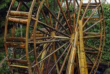 Amazing Bamboo