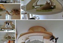 Кошачьи кровати