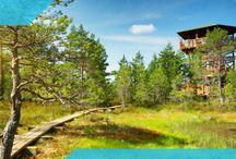 Travel - Estonia, Northern Europe