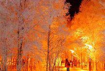 Hot trees