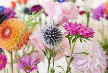 Wild flowers / by Lisa Knight