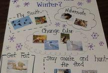 winter for teaching