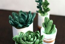 succulents paper