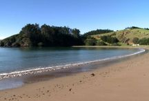 waiwurrie coastalfarm-lodge Mahinepua beach Northland New Zealand / gorgeous boutique coastal accommodation