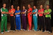 cricket big bash