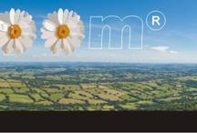 Ruralzoom