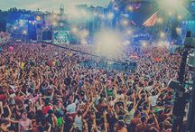 Best festivals / The best festivals and summer feelings