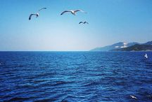 Sea / A walk by the sea is my paradise on earth...