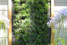 Gardening and Living Walls / by Dena Caretti