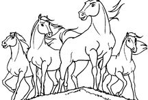 horse coloring sheets