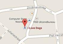 I love Dogs / Hondenbenodigdheden
