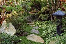 Gangvei i hagen