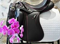 Ensemble dressage Zaldi