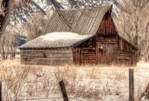 Old weathered barns