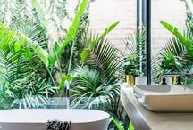 Bathroom gardens