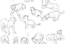 Рисовать котов