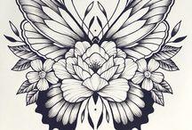 Butterflies Drawings