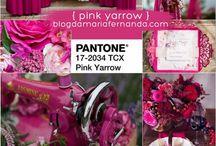 casamento pink Yarrow