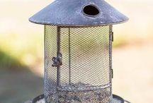 Bird feeders/ Bird baths