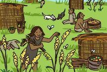 historia maanviljely