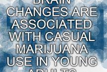 Adolescent MJ usage