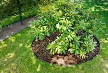 geoBORDER / Pomysły jak wykorzystać obrzeża trawnikowe w ogrodzie