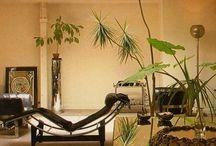 Interior Designer ... Terence Coran