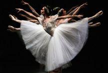 Gracefull Ballerinas